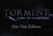 Torment: Tides of Numenera - Day One Edition DLC Steam CD Key