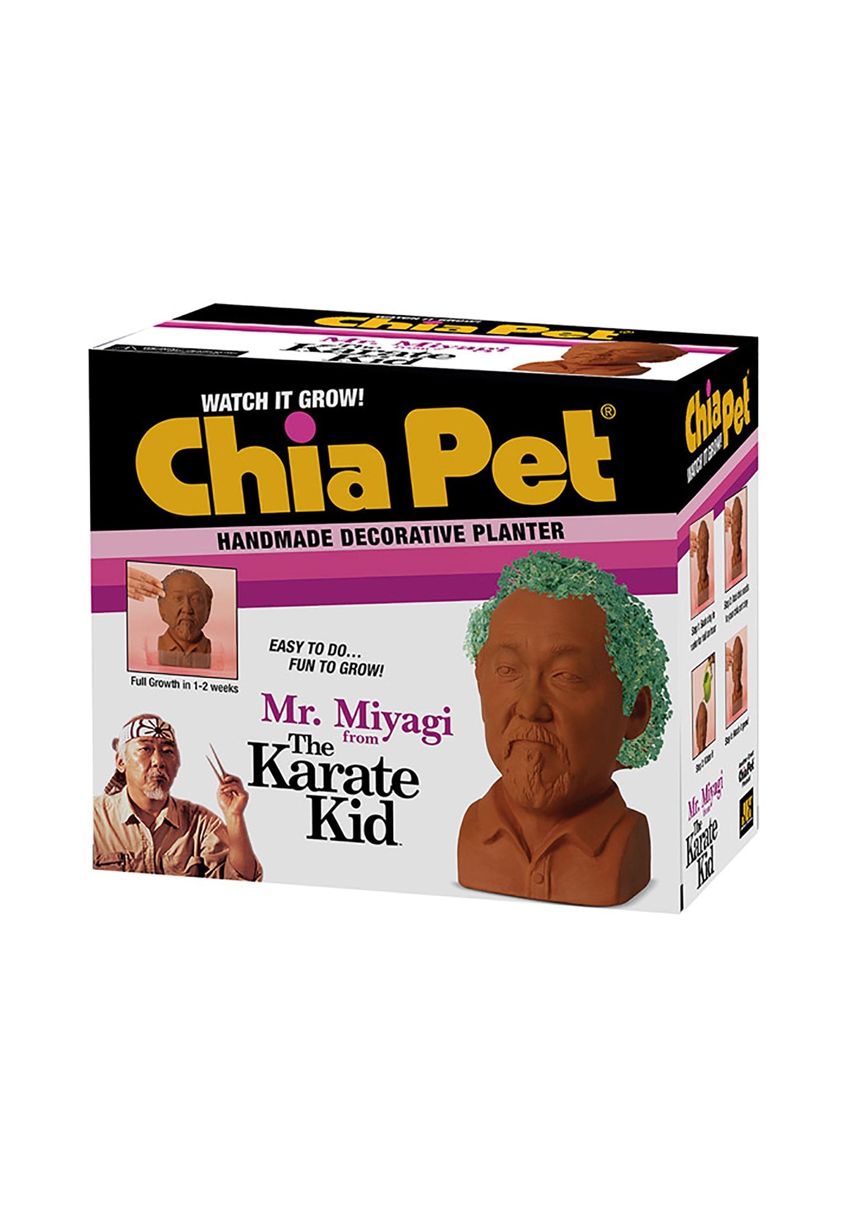 Mr. Miyagi Chia Pet Karate Kid