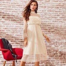 Frilled Neckline Pleated Sheer Mesh Dress