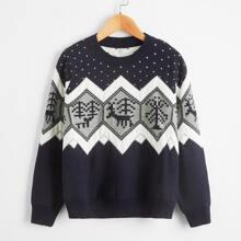 Pullover mit Chevron Muster und rundem Kragen