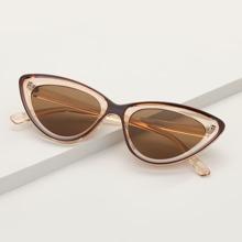Gafas de sol de ojo de gato de hombres de lentes tintadas