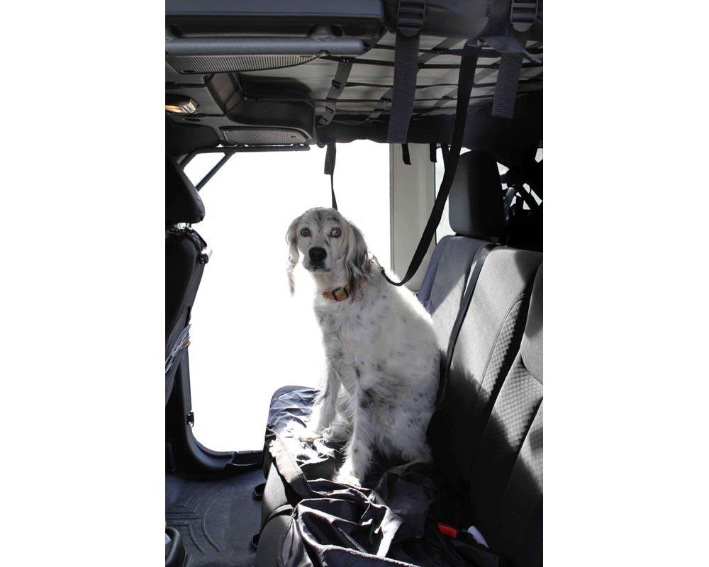 Steinjager J0043588 Roll Bar Attachment Dog Leash