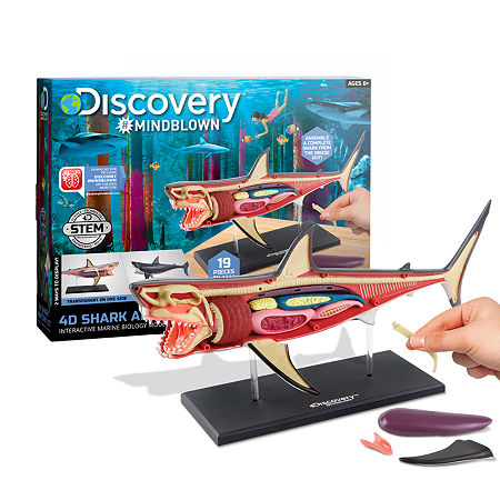 Discovery #MINDBLOWN 4D Shark Anatomy Kit Interactive Marine Biology Model, One Size , Multiple Colors