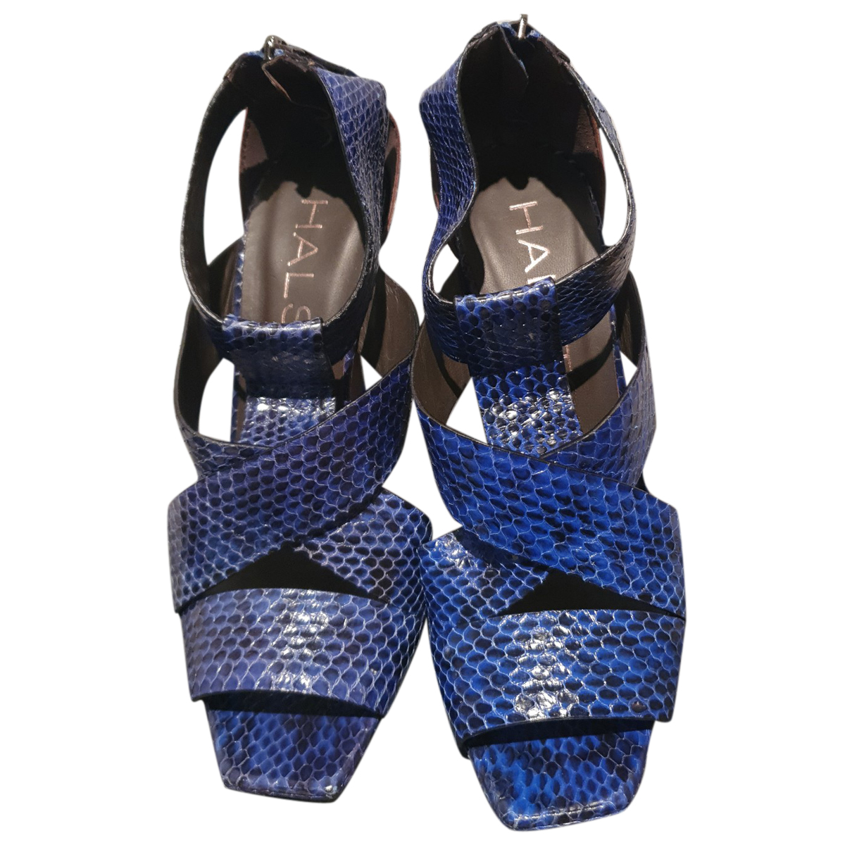 Halston \N Sandalen in  Blau Python