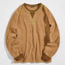 Men Letter Embroidered Teddy Pullover