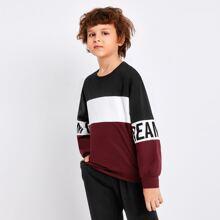 Boys Letter Graphic Colorblock Pullover