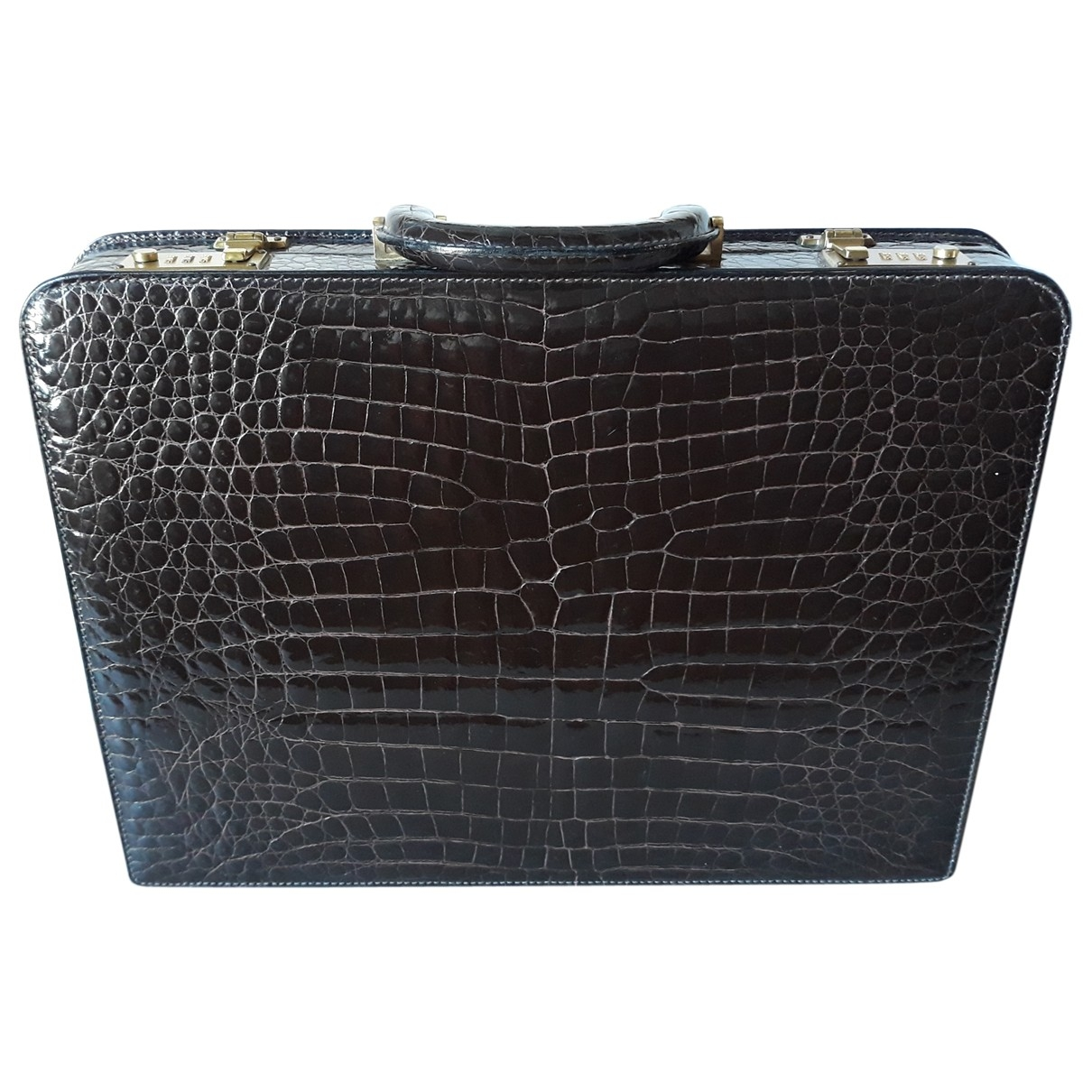 Non Signé / Unsigned \N Brown Crocodile Travel bag for Women \N