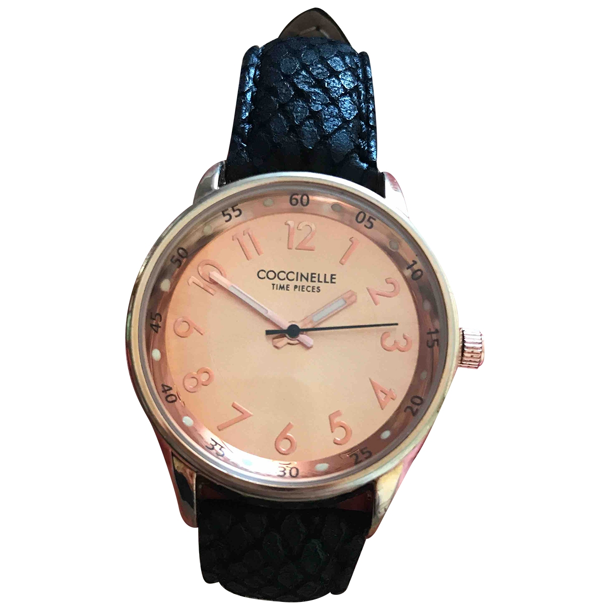 Coccinelle \N Uhr in  Schwarz Stahl