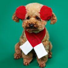 1pc Christmas Dog Scarf & 2pcs Dog Hair Clip