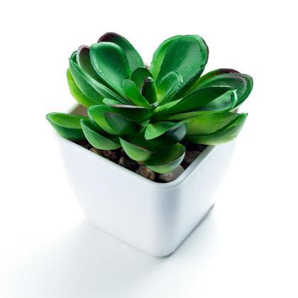Birthday Sale Mini Artificial Succulent Greenery Bonsai Plants in Plastic Pot, 5*5*8 cm - LIVINGbasics™ - Style 04