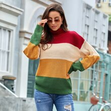 Colorblock Ribbed Knit Turtleneck Sweater