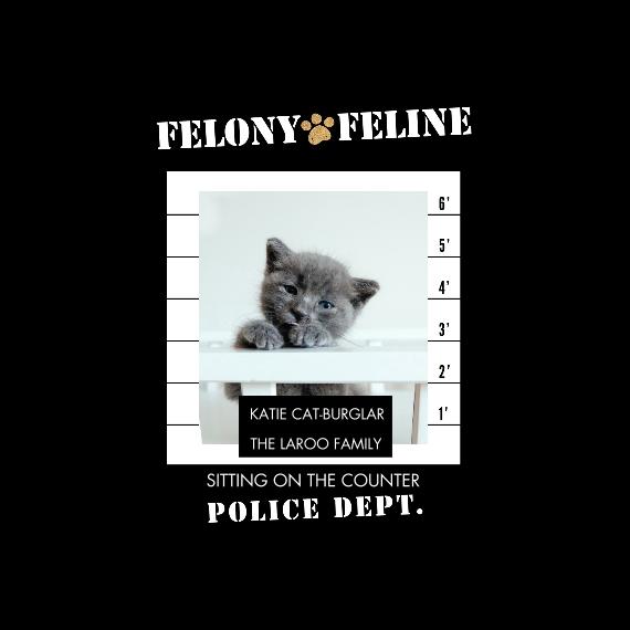 Pet Framed Canvas Print, Oak, 12x12, Home Décor -Felony Feline
