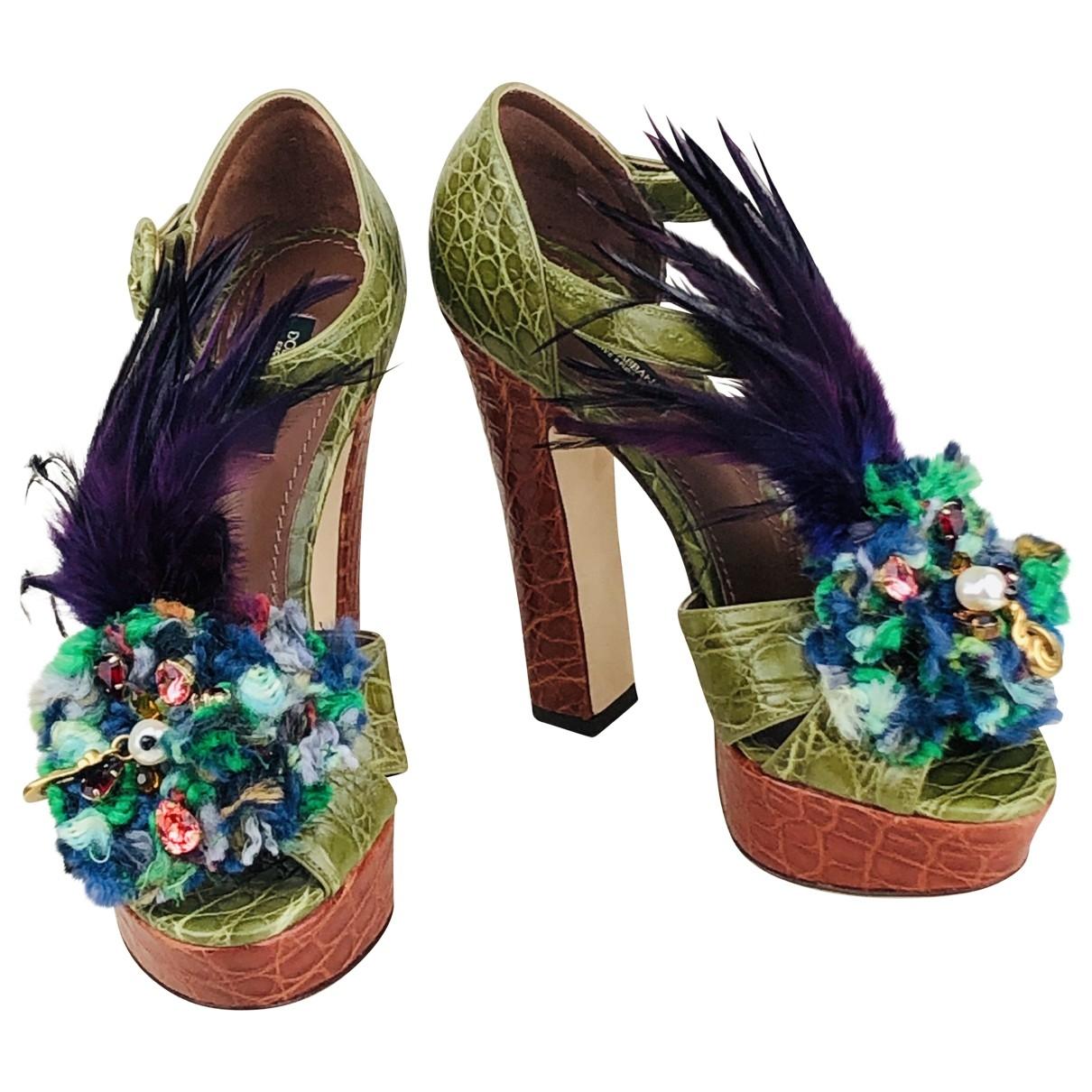 Sandalias de Cocodrilo Dolce & Gabbana