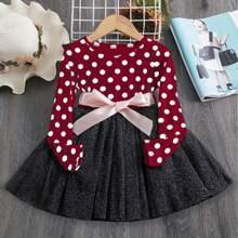 Toddler Girls Mesh Panel Polka Dot Skater Dress