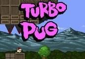 Turbo Pug Steam CD Key
