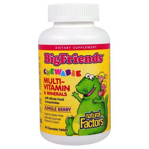 Big Friends Multi-Vitamin & Minerals Jungle 60 Chews by Natural Factors