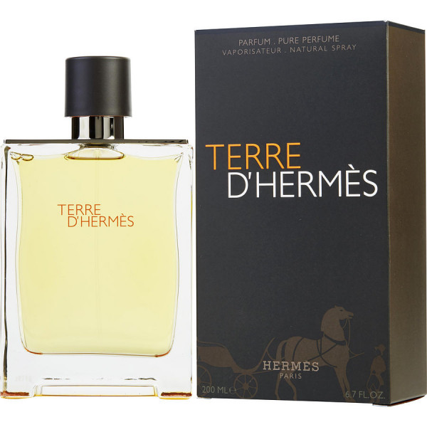 Terre dHermes - Hermes Parfum Spray 200 ML