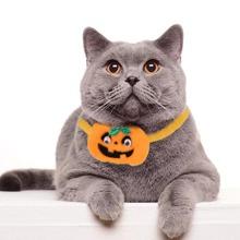 1 Stueck Katzenhalsband mit Halloween Kuerbis Dekor