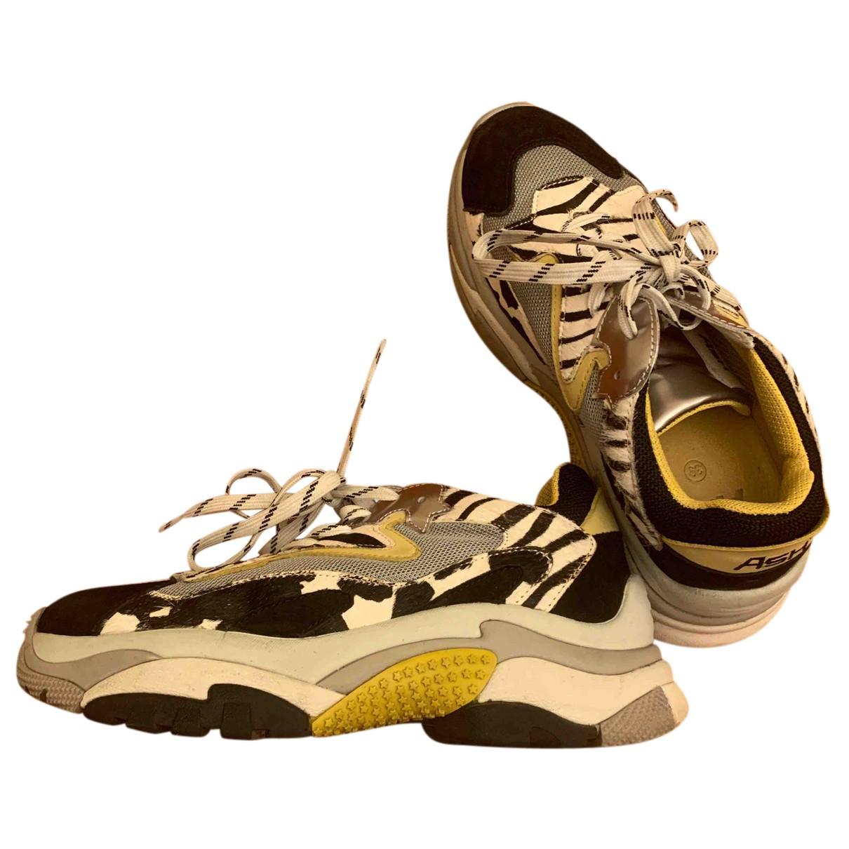 Ash \N Sneakers in Leder