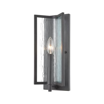 32420/1 Inversion 1-Light Sconce in Charcoal with Textured Clear