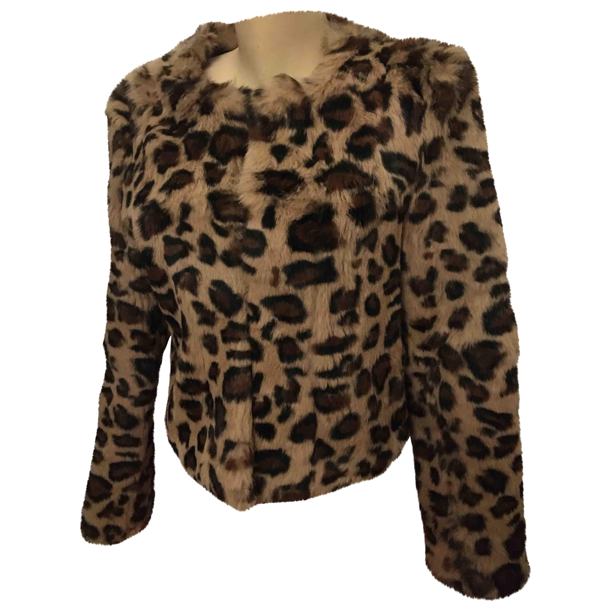 Non Signé / Unsigned \N Brown Rabbit coat for Women M International