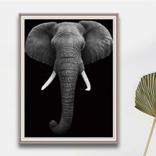 Elephant Print DIY Diamond Painting Without Frame