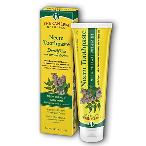 Mint Toothpaste 4.23 Oz by Organix South