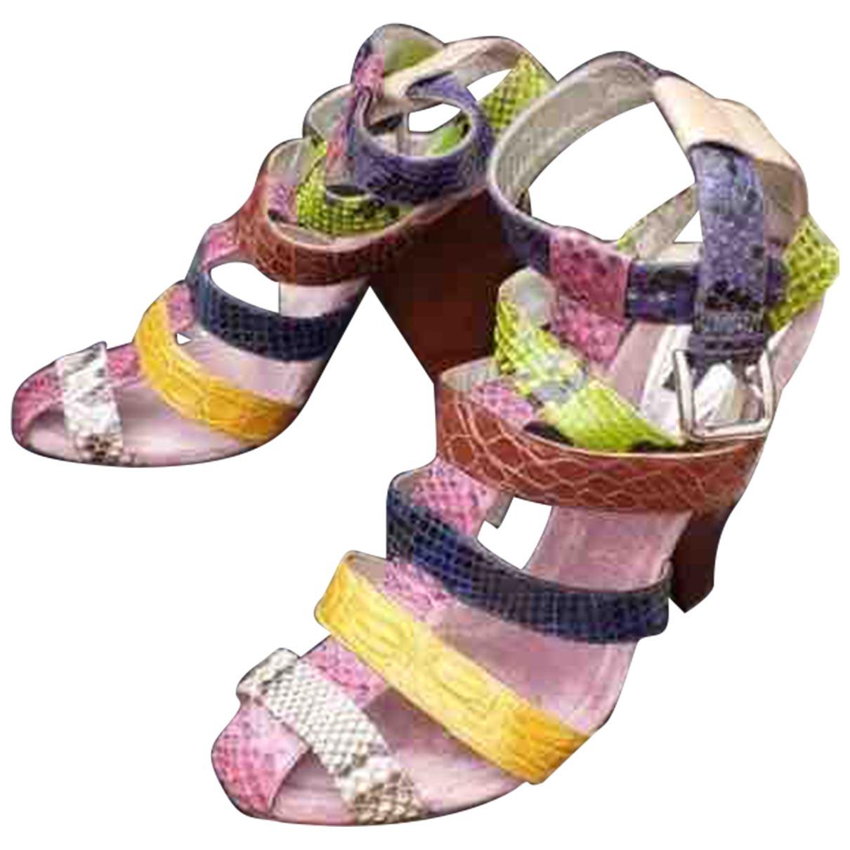 Dolce & Gabbana \N Sandalen in  Bunt Exotenleder