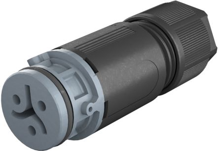 Wieland RST 08i2/3 Series, Female 3 Pole Female Connector, Cable Mount, with Strain Relief, Rated At 8A, 50 V, 120 V, Grey (50)