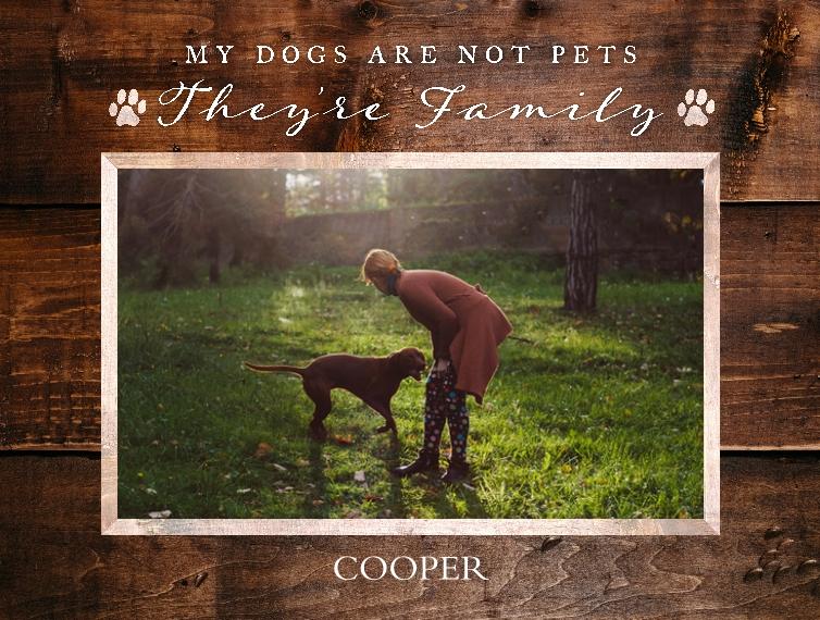 Pets Fleece Baby Blanket, 30x40, Gift -The Good Pet
