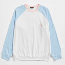 Men Color Block Embroidery Detail Pullover