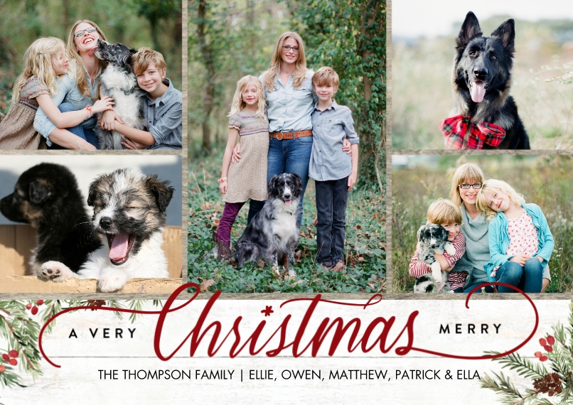 Christmas Photo Cards 5x7 Cards, Premium Cardstock 120lb, Card & Stationery -Christmas Script Foliage Memories by Tumbalina