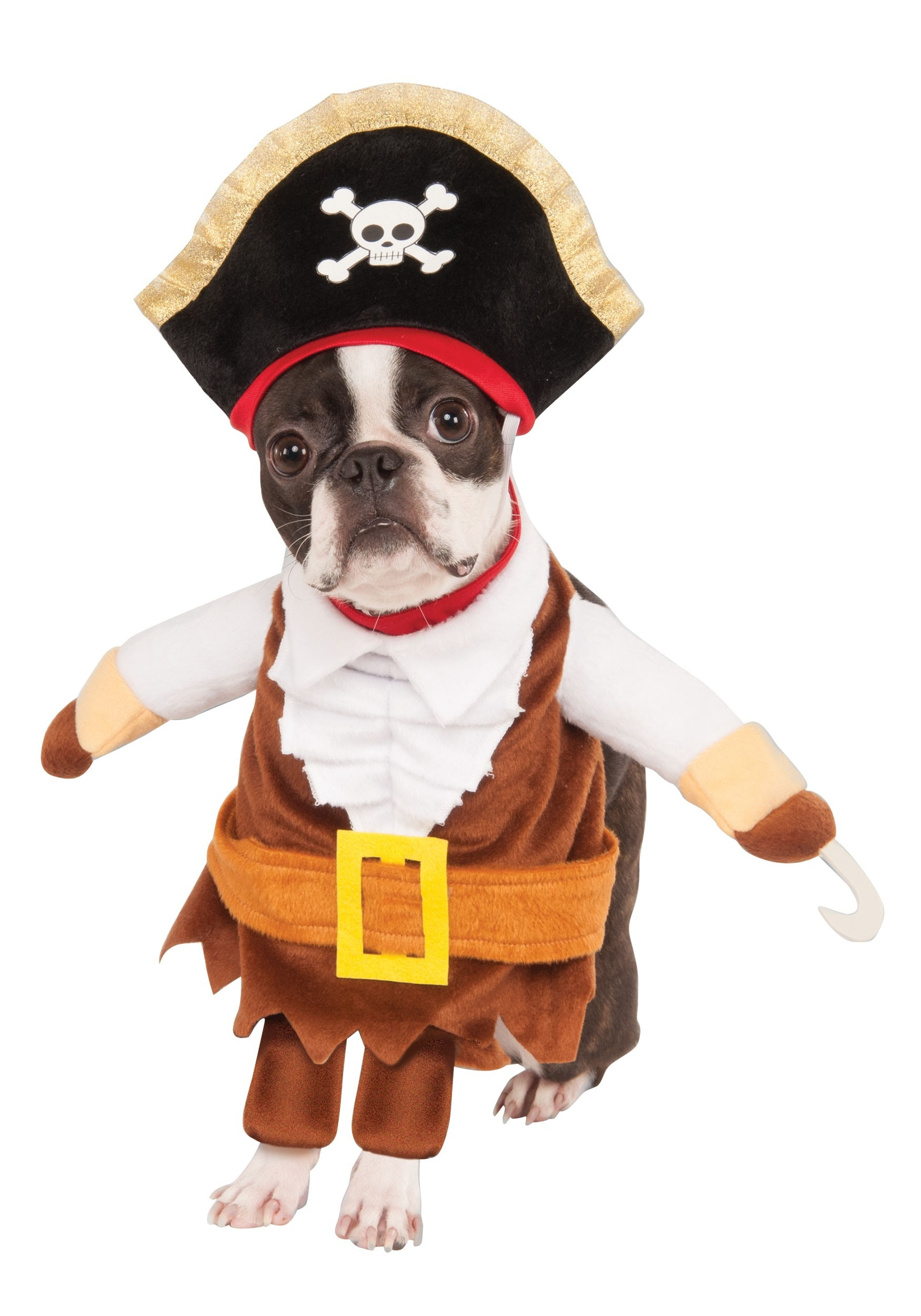 Pirate Costume for Dogs and Cats