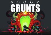 Space Grunts Steam CD Key