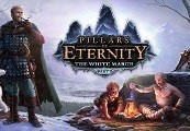 Pillars of Eternity: The White March Expansion Pass RU VPN Activated Steam CD Key