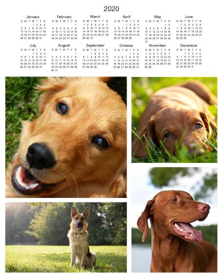 Calendar 16x20 Poster(s), Board, Home Décor -Basic