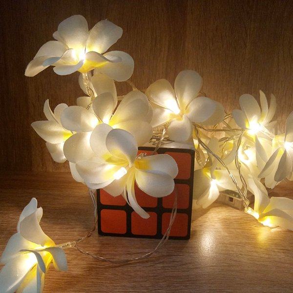Battery Powered 3M 5M Frangipani Shaped Warm White Fairy String Light for Christmas Party