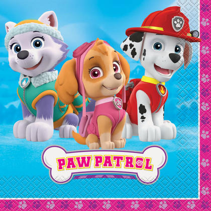 Paw Patrol Girl 16 Luncheon Napkins For Birthday Party