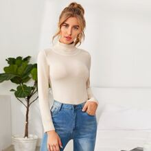Turtle Neck Rib-knit Solid Sweater