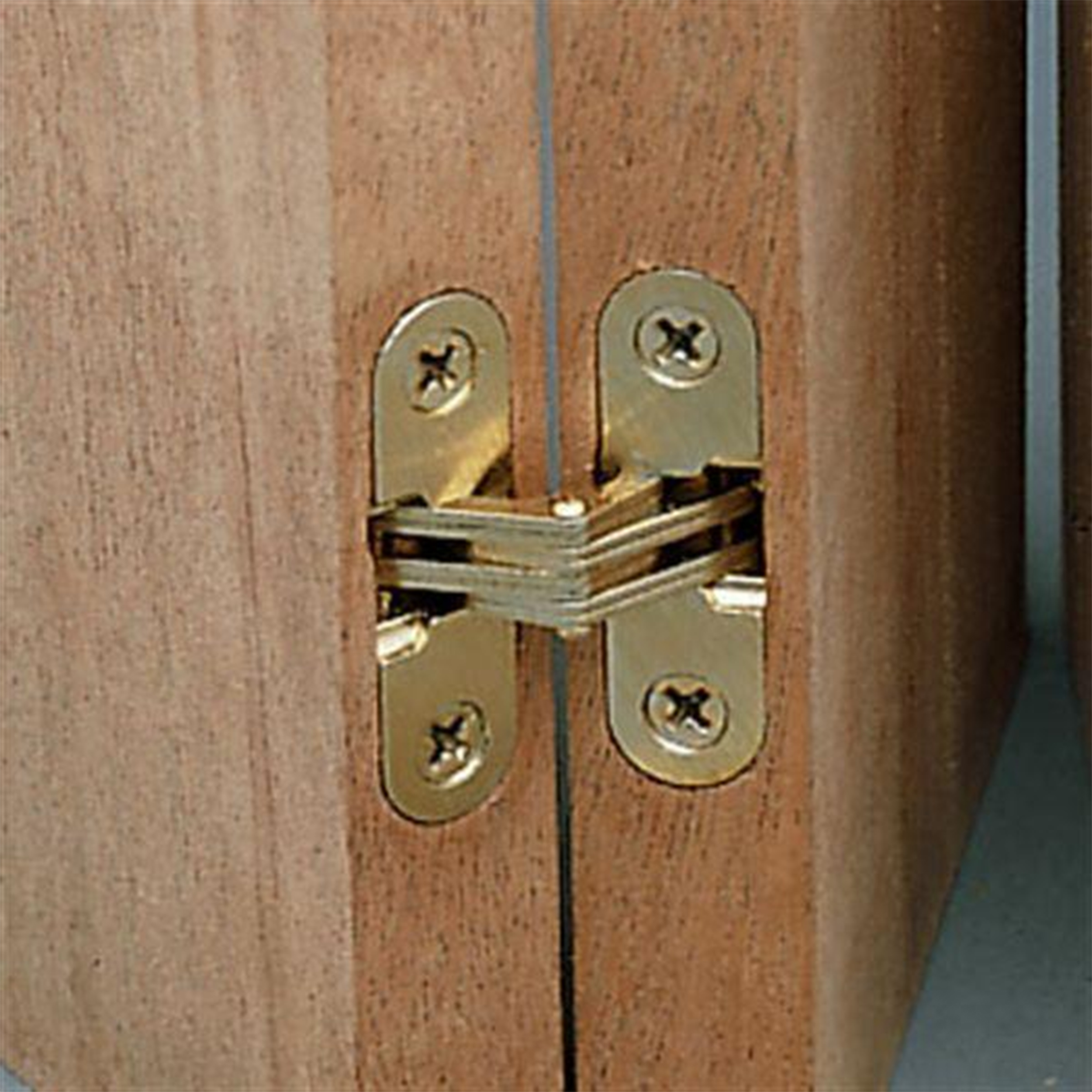 Invisible Hinge, 1/2