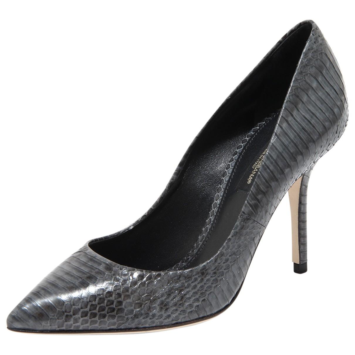 Dolce & Gabbana \N Grey Water snake Heels for Women 36 EU