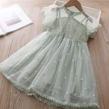 Toddler Girls Embroidered Mesh Contrast Lace Dress