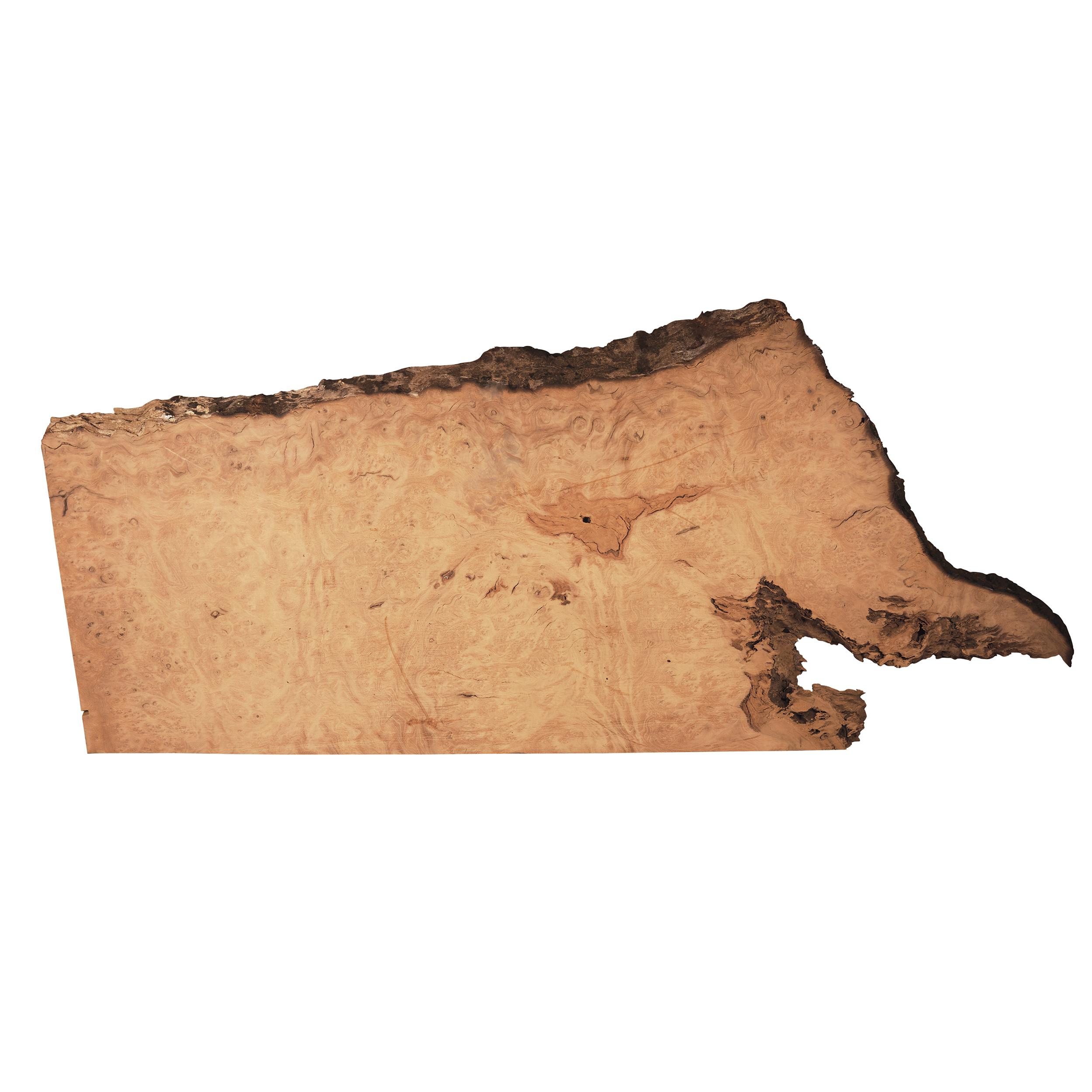 Pequia (Caryocar Villosum) Slab 56