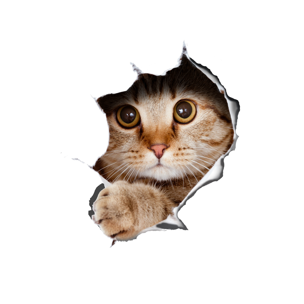 3D Cat Tear the Wall Pattern Removable Mouse Pad Desk Stickers