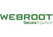 Webroot SecureAnywhere AntiVirus 2020 Key (1 Year / 1 Device)