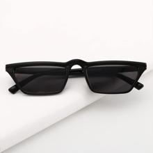 Cat Eye Acrylic Sunglasses