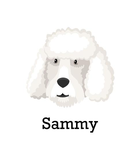 Pet Canvas Print, 8x10, Home Décor -Poodle