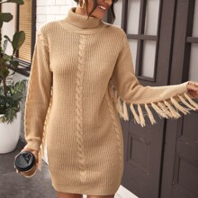 Turtle Neck Fringe Trim Sweater Dress