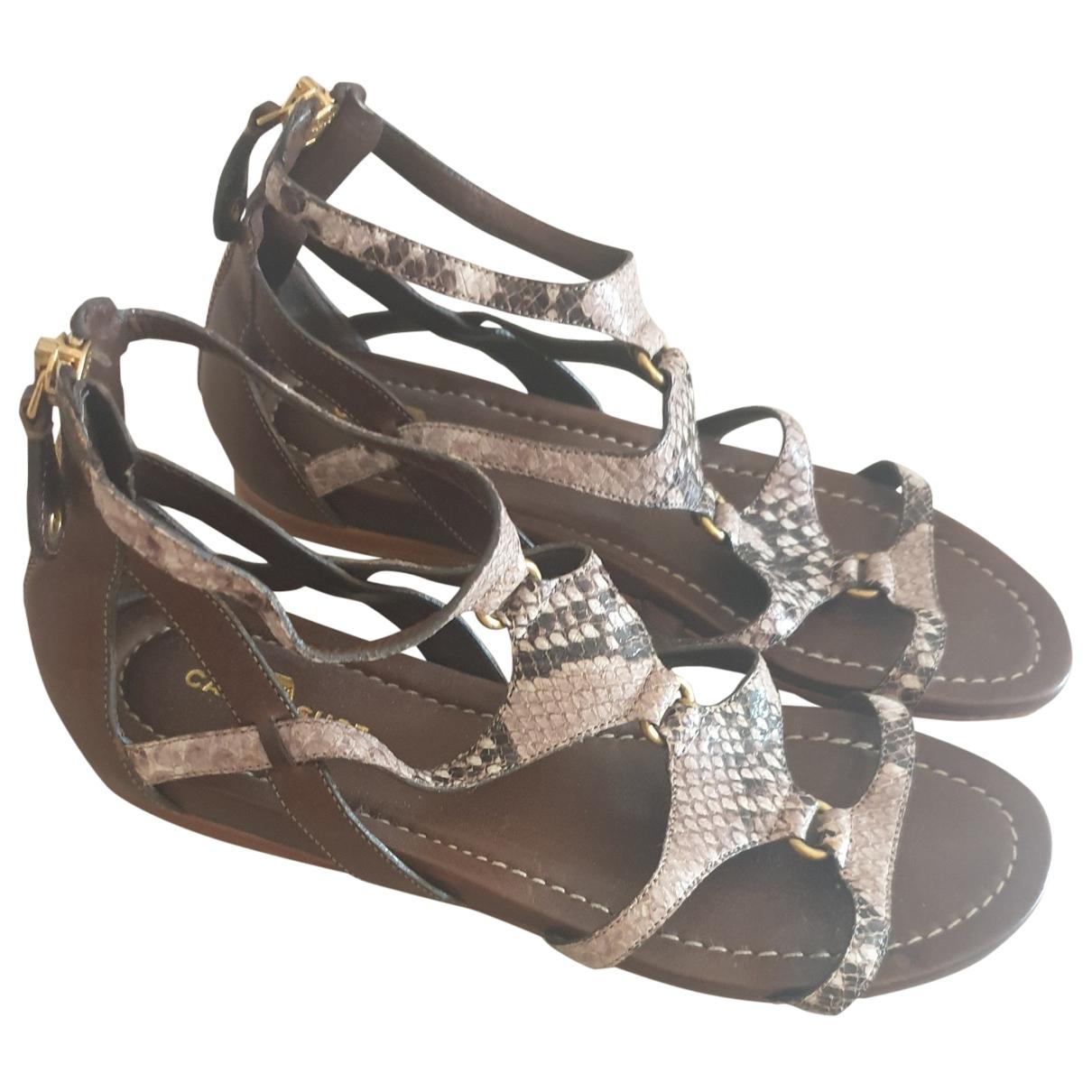 Carshoe \N Python Sandals for Women 37 EU