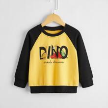 Sweatshirt mit Karikatur Dinosaurier und Buchstaben Muster und Farbblock